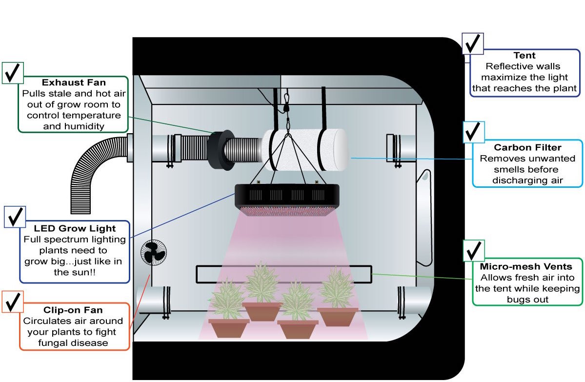 Indoor Grow Systems: How To Setup A Grow Room (Low & High ... on led diagram, slingshot diagram, tomato diagram, hydro diagram, cloning diagram, ozone diagram, ventilation diagram, cannabis diagram, seeds diagram, lighting diagram, humidity diagram, aquaculture diagram, plants diagram, grow tent ventilation setup, home diagram, ballast diagram, soil diagram, tent diagram, roots diagram, propagation diagram,